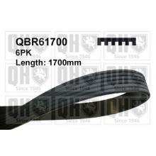 Поликлиновой ремень QBR61700,